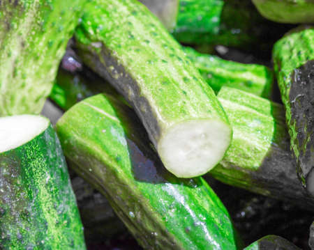 pickling: fresh green cucumbers for pickling