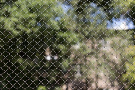 Grüner Draht Zaun Auf Den Hintergrund Von Grünen Bäumen Lizenzfreie ...