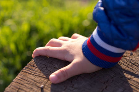 Childs hand on nature holding on a foam tree Stock Photo