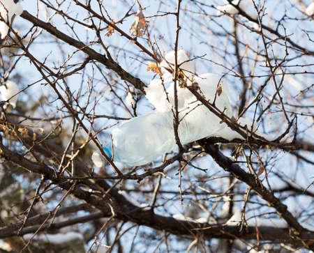 drop water: plastic bottle hanging on the tree in winter