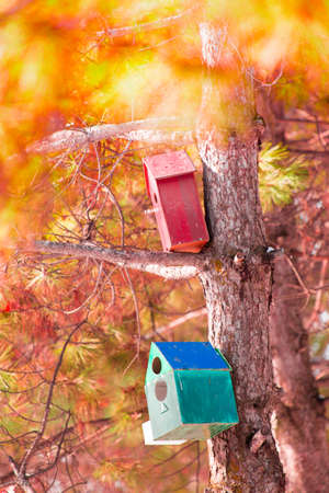 Wooden birdhouse hanging on a tree 스톡 콘텐츠
