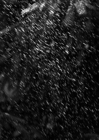 jets of water, like rain on a dark background Stock Photo - 109631281