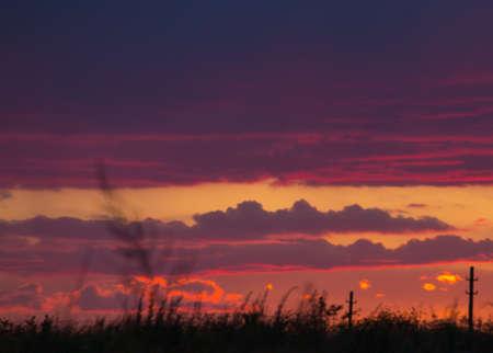 nubes rojas en el cielo durante una hermosa puesta de sol y sobre un fondo de árbol