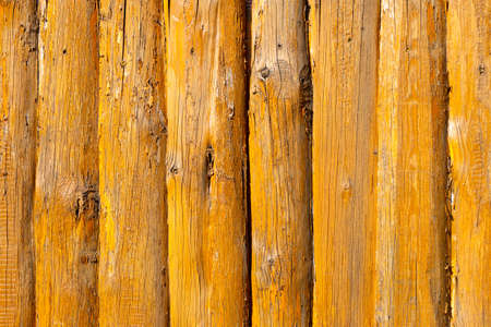 wood texture painted yellow with paints 版權商用圖片