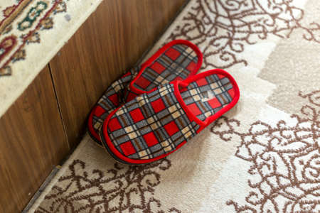 red slipper on a brown rug, rug softness of textured decorated floor, home interior Фото со стока