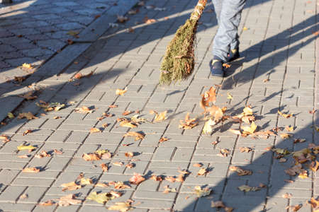 A cleaning lady cleans the dead side of the maple leaves from the sidewalk. 版權商用圖片