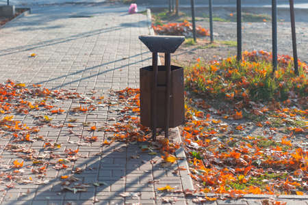Colorful fallen leaves on the sidewalk next to the trash can on a warm autumn day.