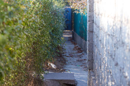 Narrow alley between two fences