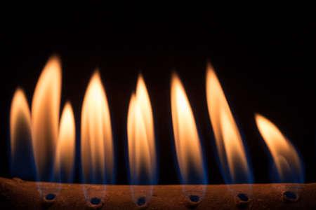 fire flames on black background Reklamní fotografie