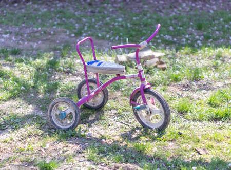 children tricycle in the garden on green grass