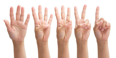 hands from one to five on a white background, set number 1 2 3 4 5 with hand 免版税图像