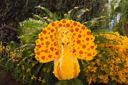 peacock made from flowers
