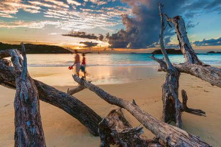 Couple and driftwood on a sandy beach at sunset, Cinnamon Bay, St  John  USVI photo