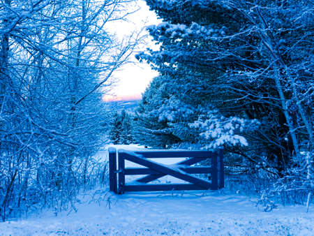 Early morning blue colored snow covered split rail fence, Stowe, Vermont, USA photo