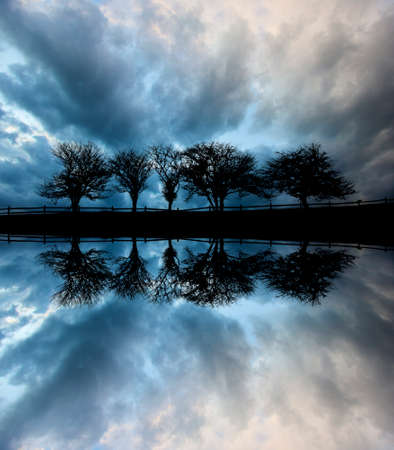 split rail: Digially manipulated mirrored image of five trees along a roadway silhouetted against stormy clouds, Stowe Vermont, USA