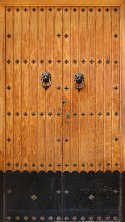 old medieval door of wood planks with door knockers of lions and rivets - epic background