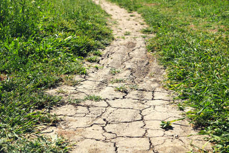 dry and brittle dirt trail, with grass and nature on the sides - ecological landscape against global warming for a wallpaper