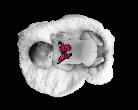 selective image of newborn sleeping with butterfly on back. isolated on black photo