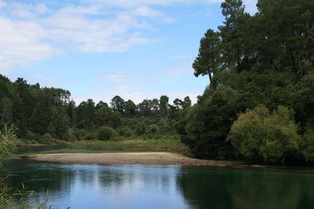 Waikato river picturesque landscape, New Zealand