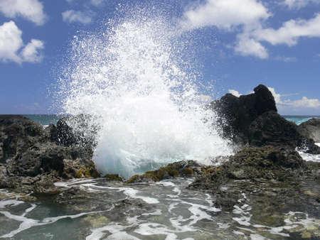 serf: Big disjoncteurs ou des vagues � la c�te. La c�te rocheuse de l'�le de P�ques. Serf de mer