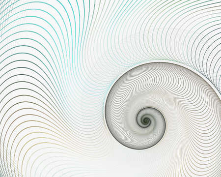 Abstract fractal spiral. Shell background, Spiral symmetry Fibonacci shell section. Half cross, golden ratio structure, growth close up Pompilius nautilus