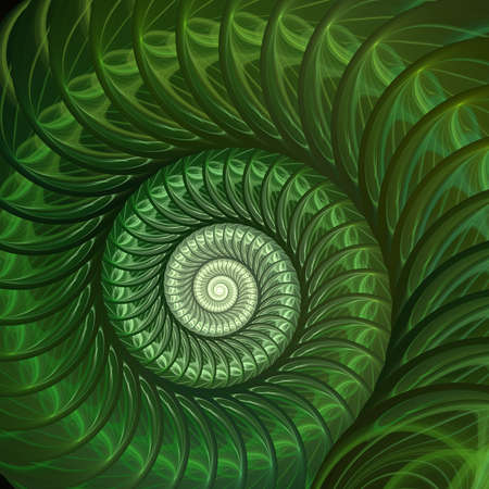 Abstract fractal spiral. Shell background, Spiral symmetry Fibonacci shell section. Half cross, golden ratio structure, growth close up Pompilius nautilus Standard-Bild - 114466330
