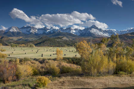 Autumn color of Fall view of hay bales and trees in fields with snow capped San Juan Mountains of Dallas Divide outside Ridgway Colorado America