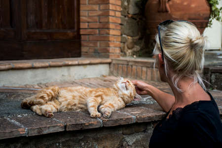 caress: Girl caress a cat chilling in Italy San Gimignano Tuscany
