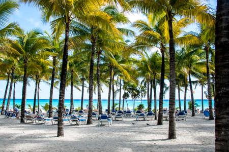 caribbeans: Beach with Palms at Playe del Carmen Mexico Yucatan Stock Photo