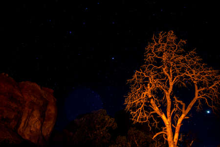 moab: Moab Utah Arches National Parc Stars in the night Stock Photo