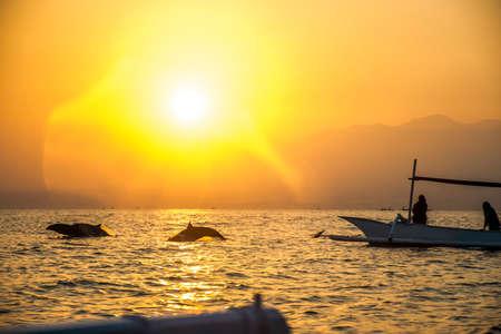Bali Indonesia free Dolphin boat Watching at Lovina Beach 3