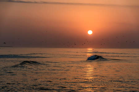 Amazing Sunset red sky waves at the beach in Salalah Oman 3