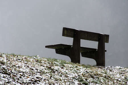 lonesome: Bench empty seat in wood trees winter and fog 14