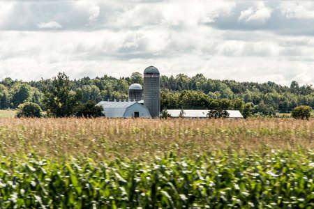 헛간 격납고와 농촌 온타리오 농장 스토리지 농업 캐나다 농업 스톡 콘텐츠