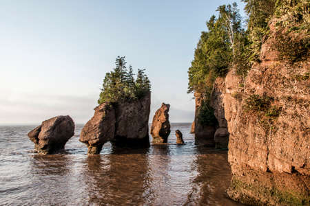 muddy: Sunrise at famous Hopewell Rocks geologigal formations at low tide biggest tidal wave Fundy Bay New Brunswick Canada