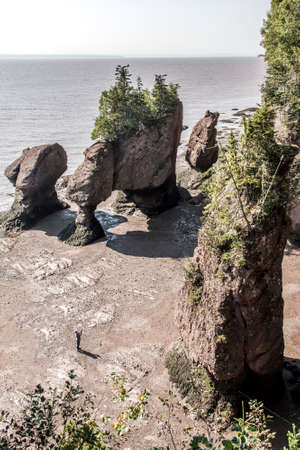 natural formation: The famous Hopewell Rocks geologigal formations at low tide biggest tidal wave Fundy Bay New Brunswick Canada