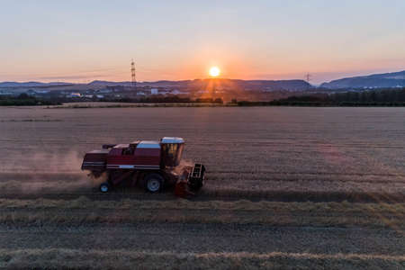 Aerial view of a combine harvester harvesting an oats crop at sunset Zdjęcie Seryjne