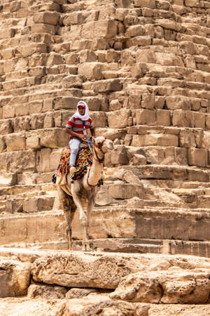 Cairo, Egypt 25.05.2018 - guides riding camels on Giza plateau in the rocky desert