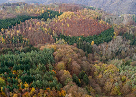 Aerial view Beautiful green, orange and red autumn forest, many trees different colors germany rhineland palantino