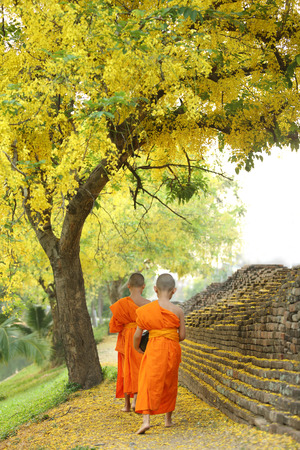 buddhist structures: Buddhist Monk walking to receive food