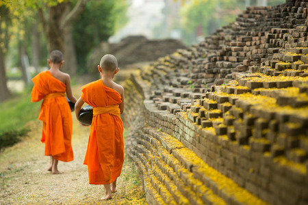 Buddhist Monk walking to receive food