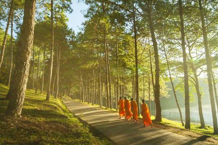 Boeddhistische Monnik Wandelen voor Ontvang Food at Pang Ung in Mae Hong SonThailand Stockfoto