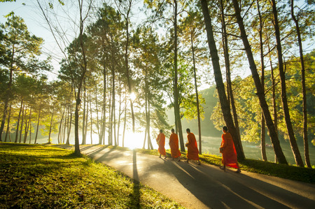 buddhist's: Buddhist Monk Walking for Receive Food at Pang Ung in Mae Hong SonThailand