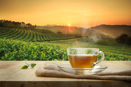 Taza de té caliente con el saqueo en la mesa de madera y el fondo de las plantaciones de té Foto de archivo - 68117336
