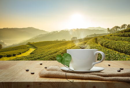 Coffee cup with sackcloth on the wooden table and the Plantations background Foto de archivo