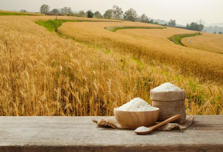 Jasmine arroz en un tazón y saco de arpillera en la mesa de madera con el fondo del campo de arroz de oro