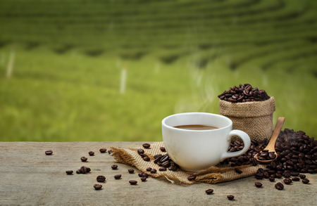 Hot Coffee cup with Coffee beans on the wooden table and the plantations background Standard-Bild