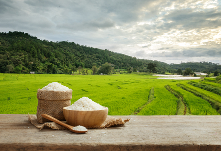 Asian white rice or uncooked white rice with the rice field background Reklamní fotografie - 68117477