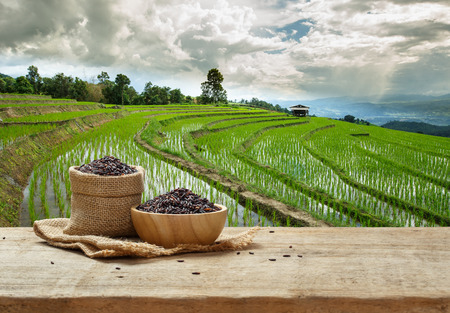 Rice berry in bowl and sack on wooden table with the rice field background