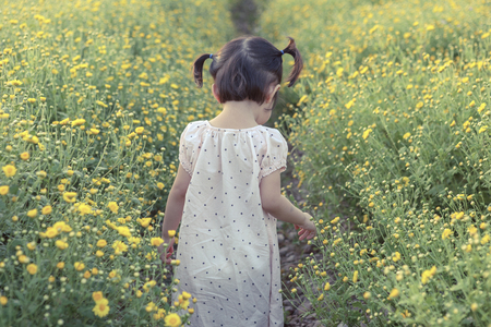 niño corriendo: Cute little laughing girl or asian little girl walking in the field of yellow flowers in a sunny summer evening, at the sunset with copy  space, view from the back Foto de archivo